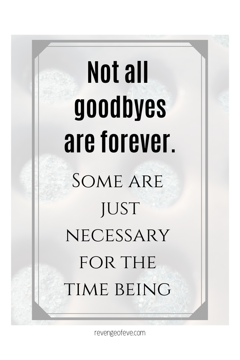 Blog graphic -Some goodbyes are forever.  Some are just necessary for the time being-Revenge of Eve